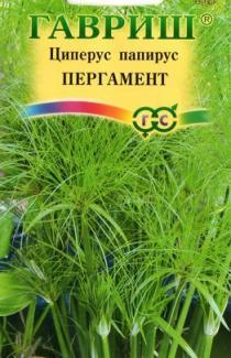 Семена Циперуса папируса Пергамент 3 шт.