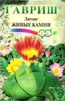 """Литопс живой камень МТ """"Гавриш"""" 5 шт."""