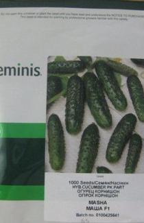 Семена огурца  Маша F1 1000 шт