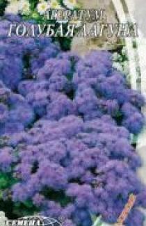 Семена Агератум Голубая Лагуна 0,2г