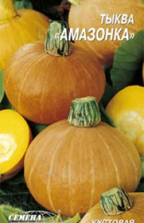 купить семена тыквы сорта  Амазонка 3г