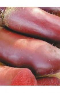Семена свеклы столовой Атаман 500г