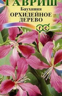Семена Баухиния Орхидейное дерево 1г