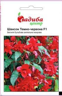 Семена  Бегония  Шансон  темно-красная  F1 10 шт