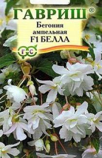 Семена   Бегония  ампельная  Белла 5 шт