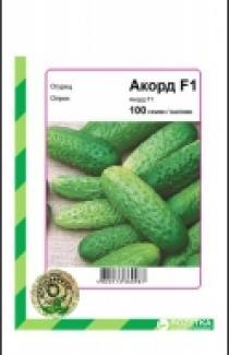 Семена огурца Аккорд 100шт