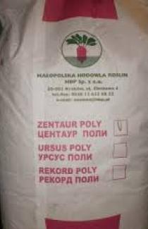 Семена свеклы кормовой Центаур поли белая 20кг (Польша)