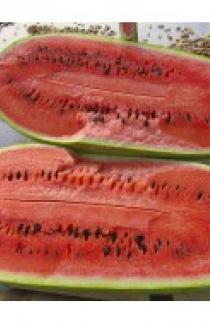 Семена арбуза Чарльстон грей 0,5кг