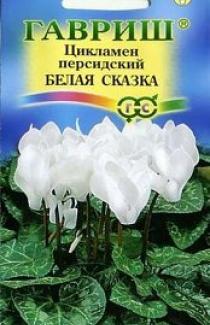 Семена  Цикламен  Персидский  Белая  Сказка 3шт.