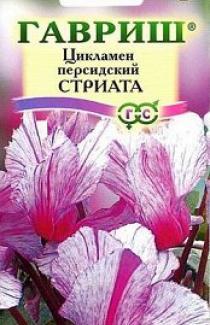 Семена  Цикламен  персидский  Стриата  3шт