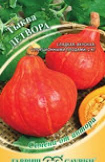 Семена тыквы Детвора 2г (Гавриш)