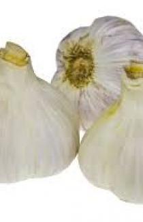 Семена озимого чеснока Дюшес (Голландия) 0,5кг
