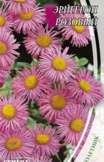 Семена Эригерон розовый 0,2г