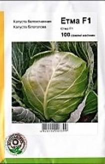 Семена капусты белокачанной Етма F1 100шт (Rijk Zwaan Голландия)