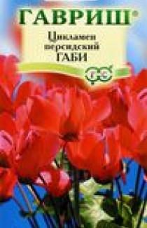 Семена Цикламен Габи персидский * 3 шт. (ТМ Гавриш)