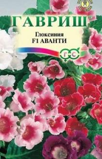 Семена  Глоксиния  Аванти  смесь 5шт