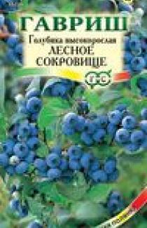 Семена Голубика Лесное сокровище 30шт (Гавриш)