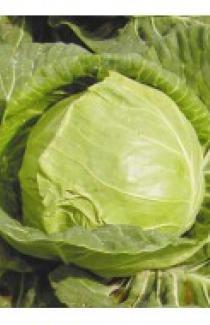 Семена капусты белокачанной Июньская 0,5кг