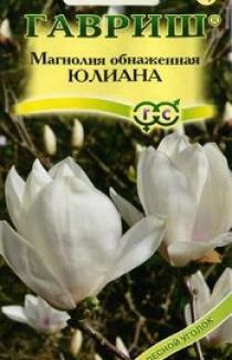 Семена Магнолия Обнаженная Юлиана 3 шт