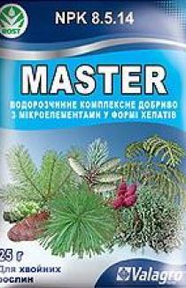 Мастер для хвойных растений 25г