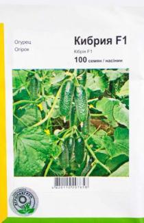 Семена огурца Кибрия 100шт (Rijk Zwaan Голландия)