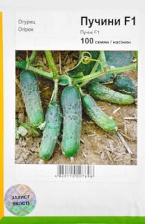Семена огурца Пучини F1 100шт