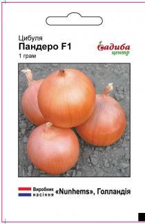 Семена лука Пандеро F1 1г
