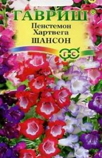 Семена Пенстемон Хартверга Шансон 0,1г