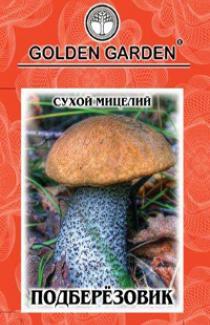 Семена сухой мицелий грибов Подберезовик 10г