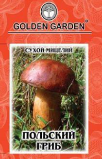 Семена сухой мицелий грибов Польский гриб 10г