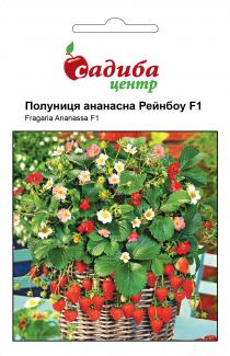 Семена клубники ананасная Рейнбоу F1 10шт