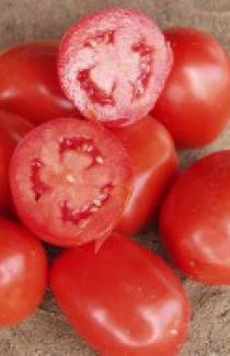 Семена томата Рио Гранде 0,5кг