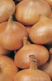 Семена лука-севка Амфора