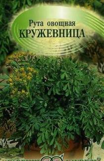 Семена руты овощной Кружевница ТМ «Гавриш» 0,1г