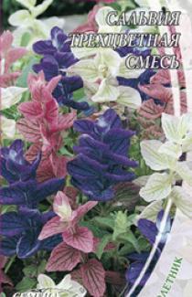Семена Сальвии Трехцветной смесь (0,3г)