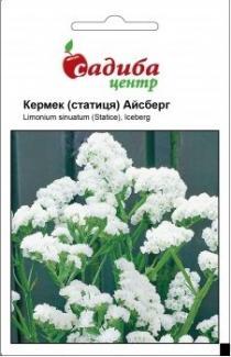 Семена Кермека Айсберг (0,1г)
