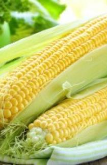 Семена кукурузы сахарной SX-659 1кг