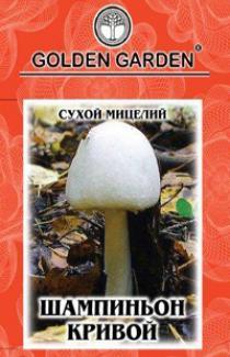 Семена сухой мицелий грибов Шампиньон кривой 10г