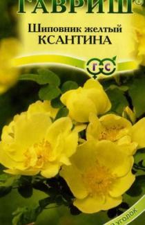 "Шиповник желтый Ксантина ТМ ""Гавриш"" (0,1г)"