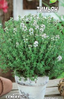 Семена Тимьян (чабрец) 0,1г