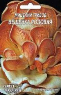 Семена мицелий грибов Вешенка розовая 5шт