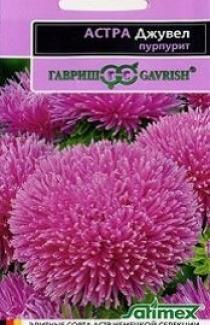 Семена Астры Джувел Пурпурит (0,1г)