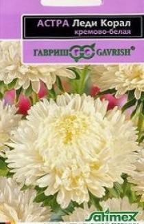 Семена Астры Леди Корал кремово-белая (0,1г)