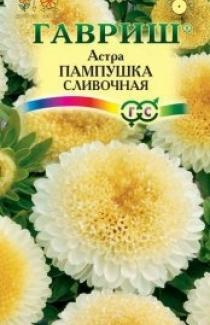 Семена Астры Пампушка сливочная (0,3г)