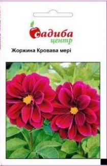 Семена Георгины Кровавая мери (0,1г)