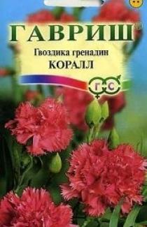 Семена Гвоздика Гренадин Коралл  0,1г