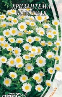 Семена Хризантемы болотной (0,3г)