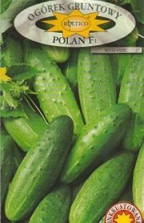 Семена огурца Полан F1 5г