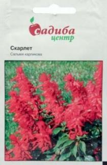 Семена Сальвии карликовой Скарлет (0,1г)