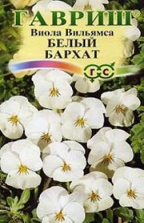 Семена Виола Вильямса Белый Бархат F1 5шт